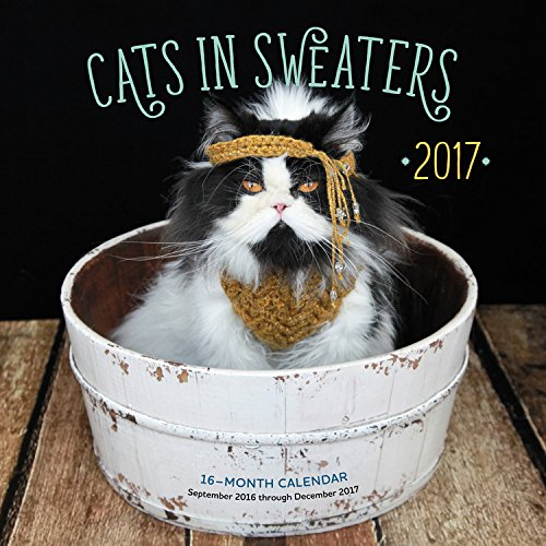 Cats in Sweaters 2017: 16-Month Calendar September 2016 through December 2017