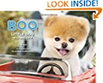 Boo: Little Dog in the Big City
