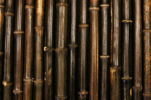 sichtschutz schwarzer bambus die neueste innovation der. Black Bedroom Furniture Sets. Home Design Ideas