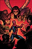 Marvel Knights Spider-Man Vol. 3: The Last Stand (0785116761) by Millar, Mark