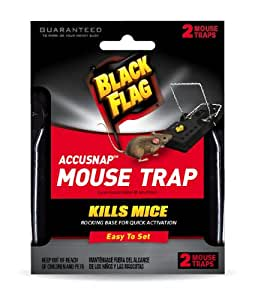 Black Flag 11050-1 Mouse Snap Traps, 12-Pack