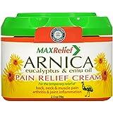 Amazon.com: Sanar Arnica White Ointment - Pomada de Arnica ...