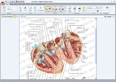 SmartDraw 2009 Healthcare Edition