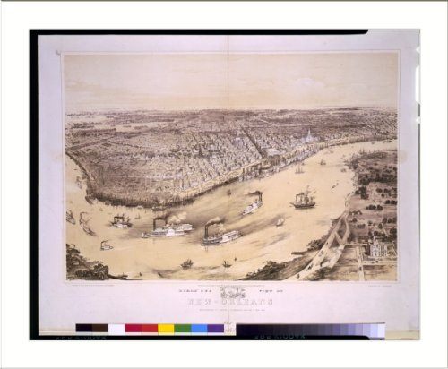 Historic Print (L): Birds' eye view of New-Orleans / drawn from nature on stone by J. Bachman [i.e., Bachman