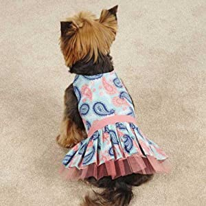 Zack & Zoey UM5591 08 19 Fresh Water Paisley Dress for Dogs, XX-Small, Light Blue