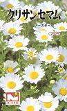 【種子】クリサンセマム・ノースポール [0263]