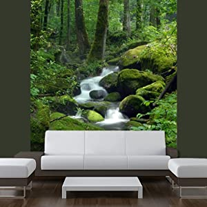 Wall LAMINATED STICKER MURAL forest stream brook river poster, mural ...