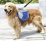 Hunderucksack StillCool Rucksack für Hunde mit wasserfesten, atmungsaktiven Satteltaschen (M, Orange) -