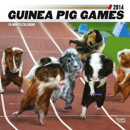 Guinea Pig Games 2014 Square 12x12