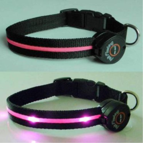 Multi-Function Dog Collar with Pink LED Lights - Medium