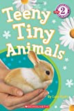 Scholastic Reader Level 2: Teeny Tiny Animals