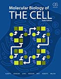 img - for Molecular Biology of the Cell book / textbook / text book