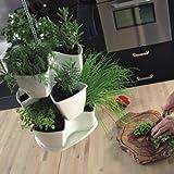 COUBI vaso pensile a trifoglio per piante, erbe aromatiche 3 livelli, colore: bianco