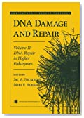 DNA Damage and Repair: Volume 2: DNA Repair in Higher Eukaryotes (Contemporary Cancer Research)