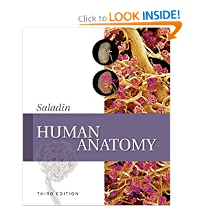 Human Anatomy 2nd Edition PDF by Kenneth Saladin