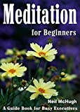 Meditation for Beginners: A Guide Book for Busy Executives