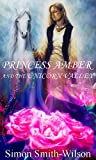 Princess Amber and the Unicorn Valley