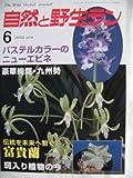 自然と野生ラン 2002年 06月号[雑誌]