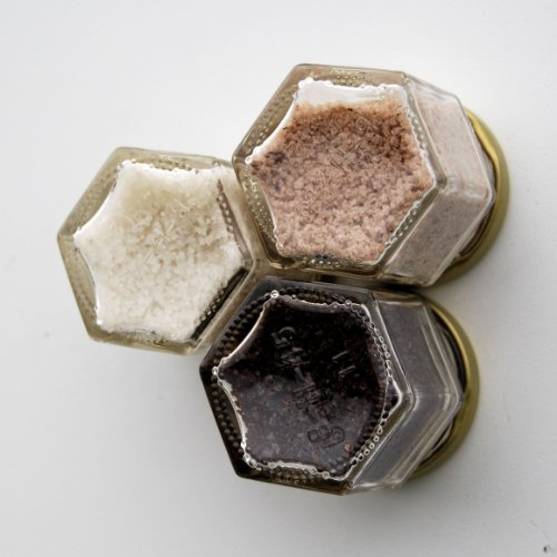 Gneiss Spice Magnetic Mini Salt Kit: Grilling Salts (Includes Habanero, Hickory and Maple Infused Salts) (Honeycomb Shaped Jar compare prices)