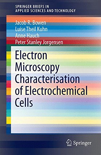 Electron Microscopy Characterisation Of Electrochemical Cells (Springerbriefs In Applied Sciences And Technology)