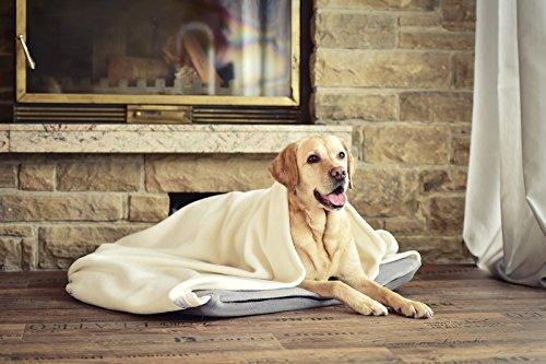Das-ganz-besondere-Hundekissen-mit-angenhter-Decke-fr-ein-unvergleichliches-Wohl-und-Sicherheitsbefinden-fr-Ihren-Hund-Farbe-Creme-Grau-Gre-110x100-cm-fr-groe-Hunde-Innen-und-Auenteil-getrennt-waschba