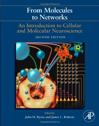 From Molecules to Networks, Second Edition: An...