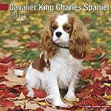 Cavalier King Charles Spaniel W 2013