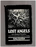 img - for Lost Angels of a Ruined Paradise: Themes of Cosmic Strife in Romantic Tragedy book / textbook / text book