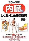 カラー図解 内臓のしくみ・はたらき事典