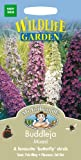 Mr. Fothergill's 19219 150 Count Buddleja Mixed Seed