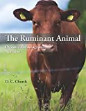 img - for The Ruminant Animal: Digestive Physiology and Nutrition book / textbook / text book