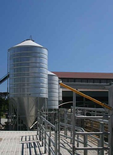 Dairy Farm Grain Silo - 52