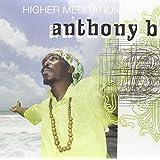 Higher Meditation [Vinyl LP]