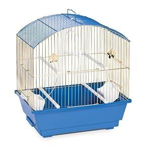 Amazon Com Prevue Hendryx 1404 Round Roof Parakeet Cage