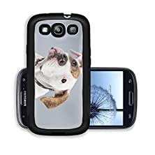 buy Liili Premium Samsung Galaxy S3 Aluminum Case Puppy American Bulldog White With Red Spots Isolated Against Grey Background Studio Portrait Image Id 21625285