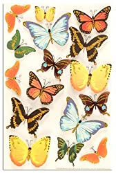 Martha Stewart Crafts Butterfly Stickers By The Package