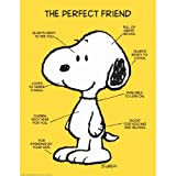 Peanuts The Perfect Friend Poster - Classroom and Bulletin Board Decorations