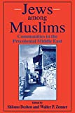 img - for Jews Among Muslims: Communities in the Precolonial Middle East book / textbook / text book