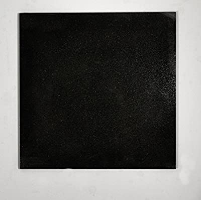 12x12 Absolute Black Granite Kitchen Bathroom Floor Tile Backsplash Patio T-124
