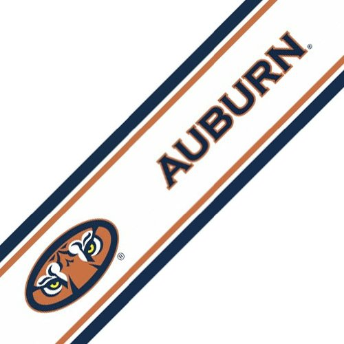Auburn Peel and Stick Wallpaper Border at Amazon.com