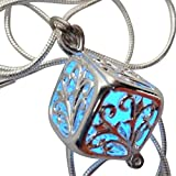 Wishing Square box Magical Fairy Glow in the Dark Necklace-blue-sil