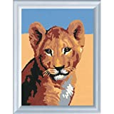 Lion Cub Paint By Numbers