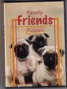 Precious Puppies-Family Friends