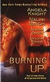 Burning Up (Berkley Sensation) (0425235955) by Knight, Angela