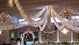 Spring Rose Christmas Wedding Decoration Light Set, 24 Feet Long, 100 Clear Bulbs with White Cord