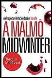 A Malmö Midwinter: An Inspector Anita Sundström Novella (The Malmö Mysteries)