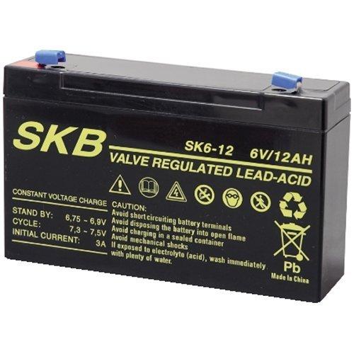 GBC-Skb Batterie au PloMB 6 V Faston 4,8/12Ah