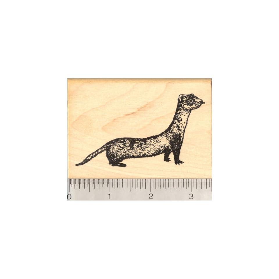 Black Footed Ferret Rubber Stamp