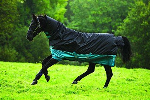 horseware-amigo-mio-all-in-one-turnout-medium-200g-fullung-regendecke-mit-halsteil-black-turquoise-1