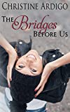 The Bridges Before Us: New Adult (Fix It or Get Out Book 3)